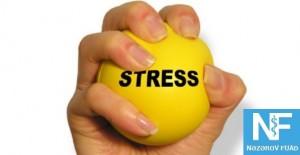 stres 1