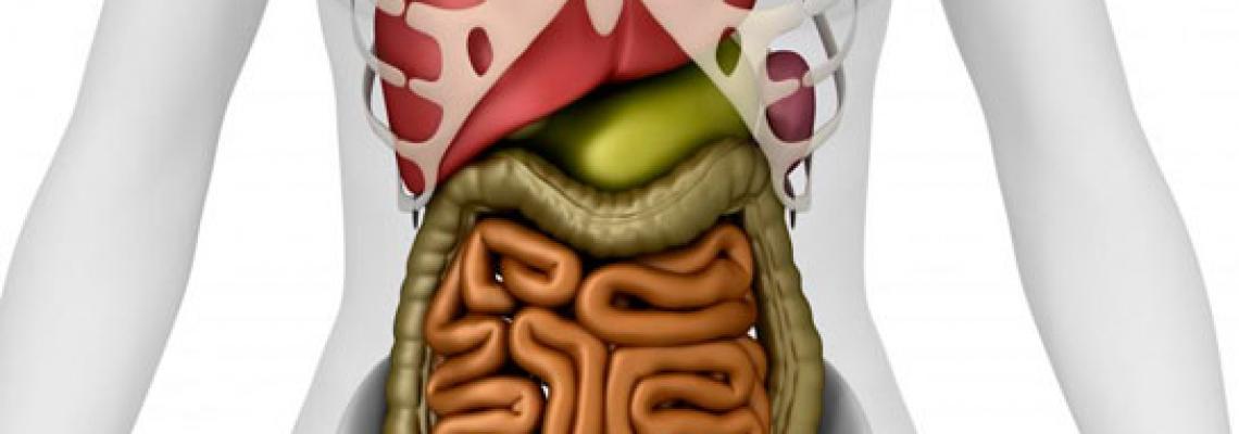 Nəzik bağırsağın obstruksiyası